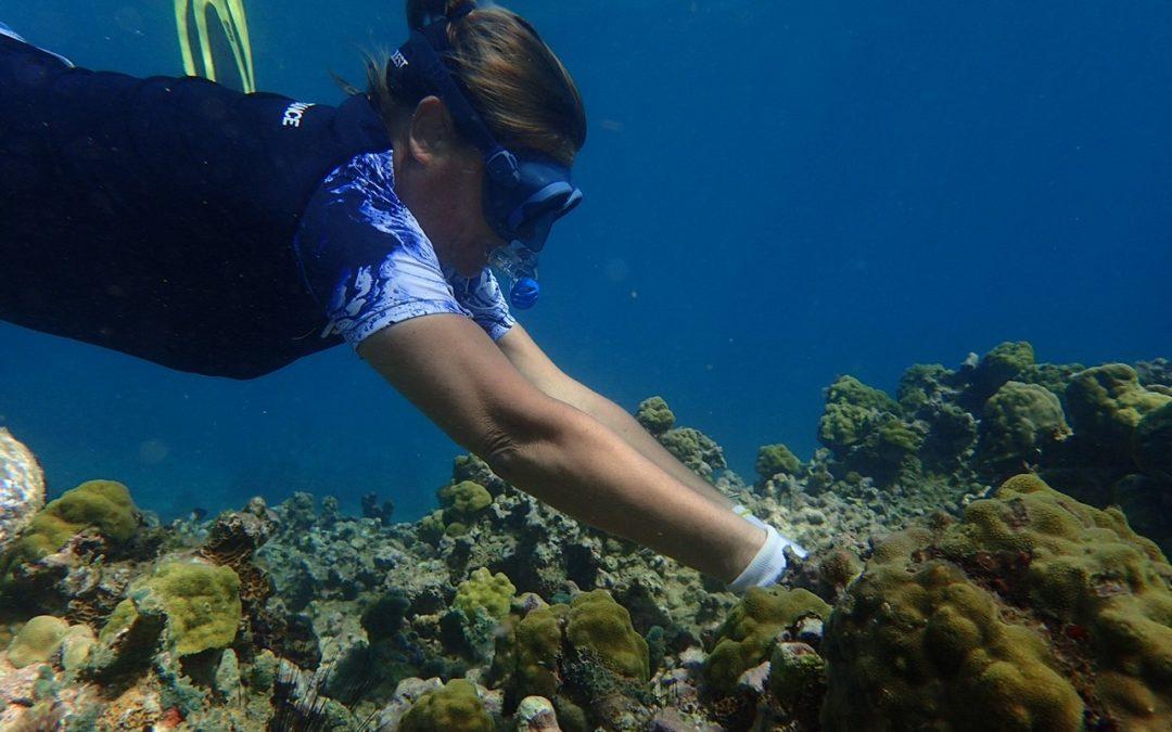Vers l'Avenir 9/03/2021 – Vinciane Jacquiez, jardinière de corail