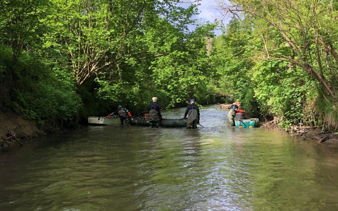 Un, deux … et de trois !                                                Troisième mission rivière pour Bubbles & More